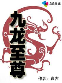 九龙至尊最新章节