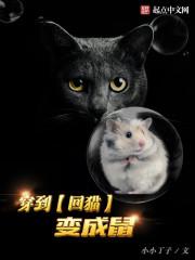 穿到回猫变成鼠最新章节txt下载