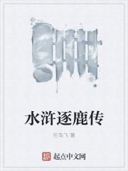 水浒逐鹿传最新章节