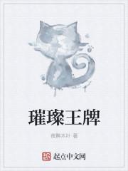 璀璨王牌最新章节