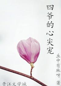 四爷的心尖宠(重生)
