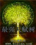 最强天赋树