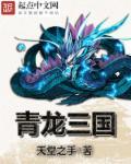 青龙三国最新章节